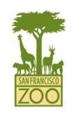San Francisco Zoo Camp
