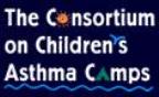 AAFA Asthma Camp - Camp Nomowheezin